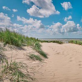 Strandopgang richting het Noordzeestrand van eric van der eijk