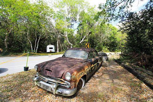Oldtimer in de Everglades van