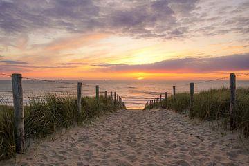 Strandopgang aan zee sur