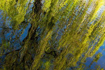Treurnis en water rechthoek van Floris van Woudenberg