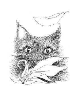 Stealth Cat - schwarz-weiße Illustration Katze von Ilse Schrauwers, isontwerp.nl
