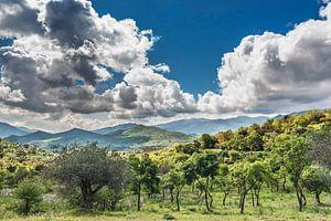 Nature park Parco delle Madonie