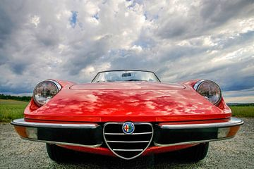 Alfa Romeo Spider Fastback van Ronnie Reul