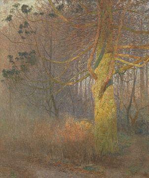 Sonniger Baum, Emile Claus