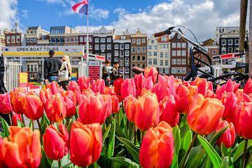 Tulpen uit Amsterdam van Peter Bartelings Photography