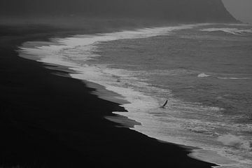 Black sand beach sur Louise Poortvliet