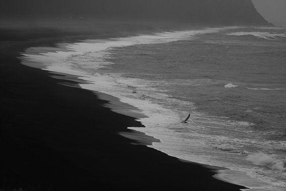 Zwart-wit strand van Louise Poortvliet