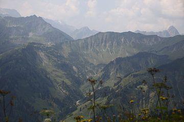 Alps mountains van