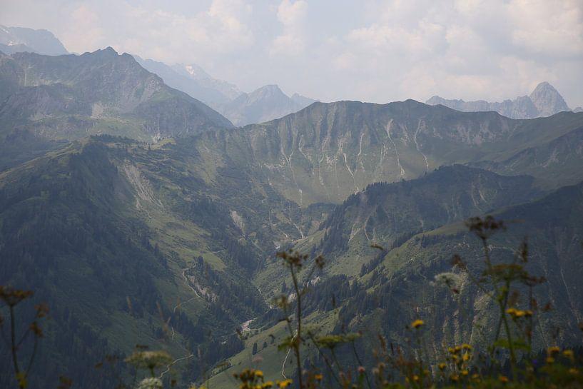 Alps mountains van Erich Werner