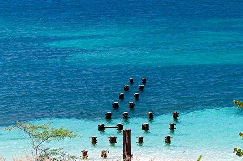 strand in aruba van gea strucks