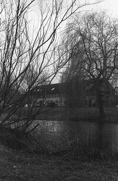 Wat bomen en een huis von Melvin Meijer