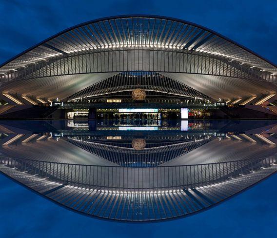 Liege Belgium trainstation abstract van Brian Morgan