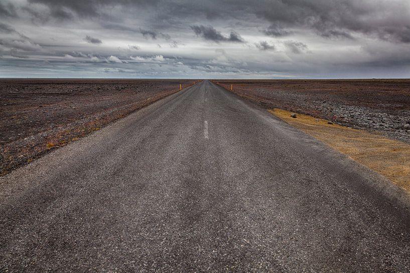 Road to nowhere van Bart van Dinten