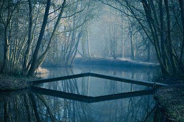 Le mystérieux parc Dwaal à Hoorn sur Shorty's adventure