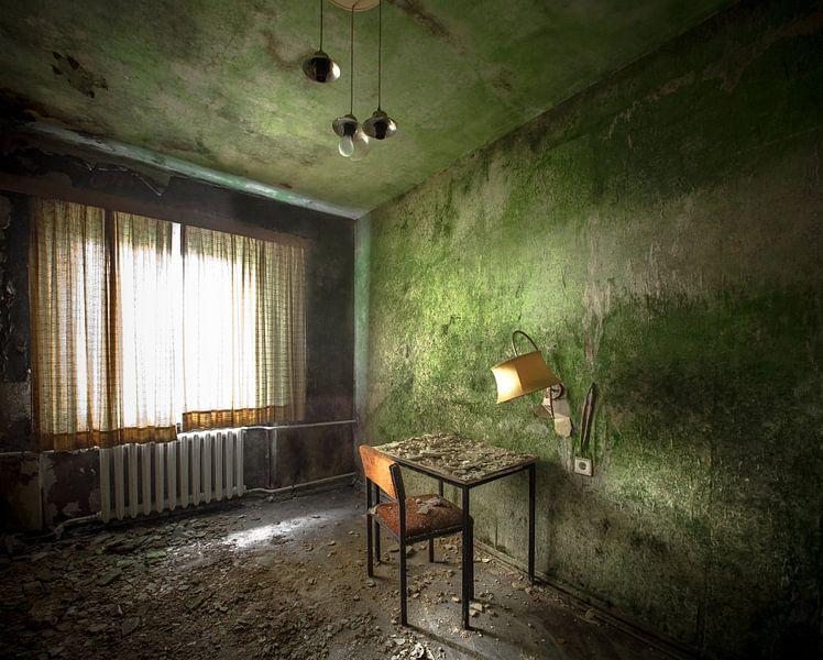 De groene kamer van Olivier Van Cauwelaert