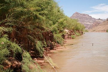 colorado river, grand canyon van Karen Boer-Gijsman