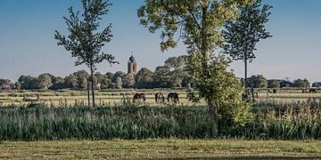 Zomeravond landschap met de kerktoren van Deinum sur Harrie Muis