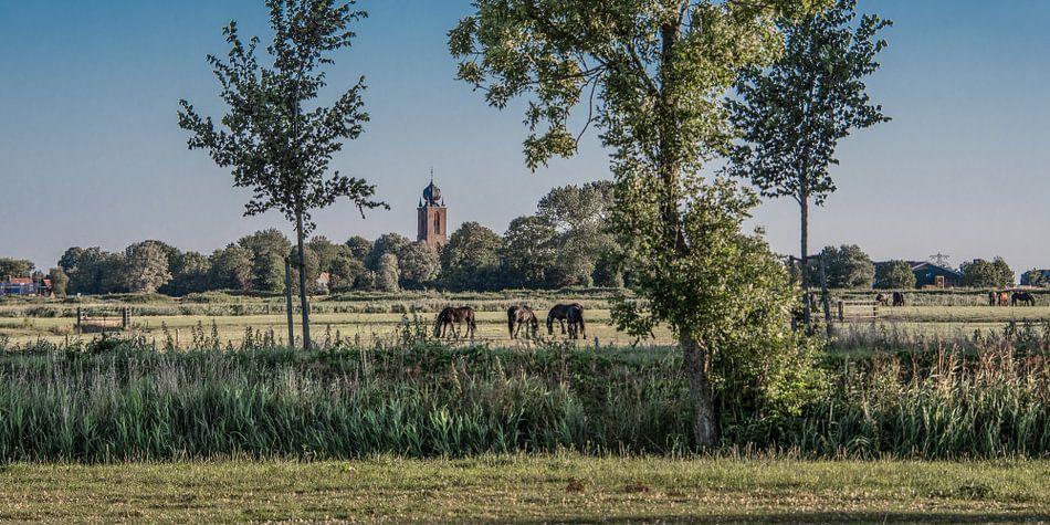 Zomeravond landschap met de kerktoren van Deinum