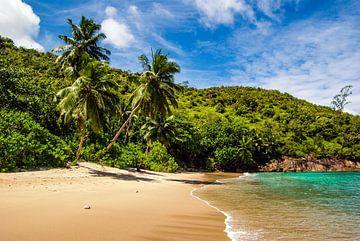 Plage de rêve Anse Major -  Mahé - Seychelles sur Max Steinwald