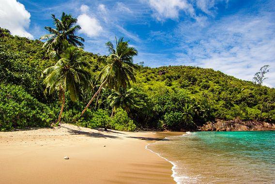 Droomstrand Anse Major -  Mahé - Seychellen