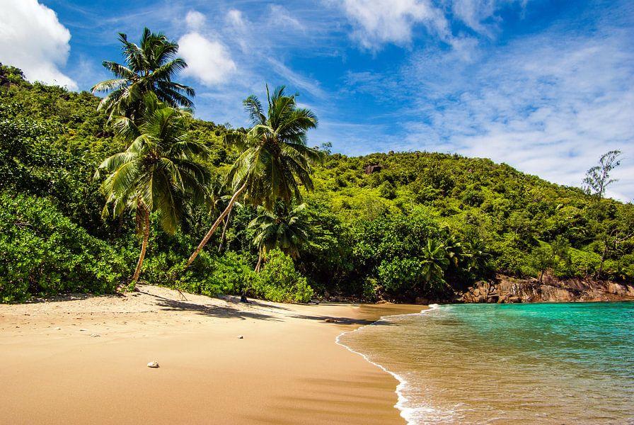 Seychellen - Mahe - Anse Major