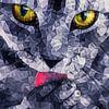 Katzenzunge van Anne Ebert thumbnail