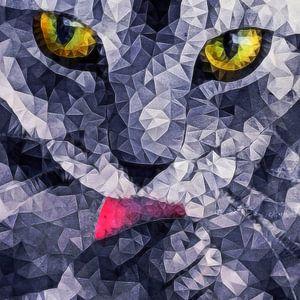 Katzenzunge van
