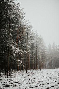 Klein laagje sneeuw over een mistige Lemelerberg van Holly Klein Oonk
