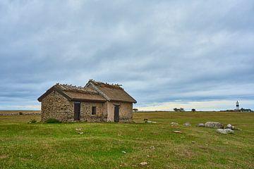 schapen huizen