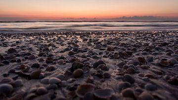 Schelpen bij zonsondergang van Patrick Mortko