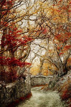 Hiddon Mauer, England von Lars van de Goor