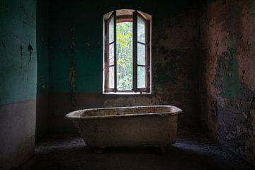 Bain abandonné dans la chambre noire. sur Roman Robroek