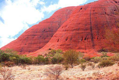 Red Olgas mountains,  Australian Outback
