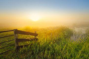 Sonnenaufgang über dem Wieden an einem schönen nebligen Frühlingsmorgen. von Bas Meelker