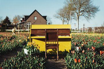 Gelbes Klavier zwischen den Tulpen von Sanne Dost