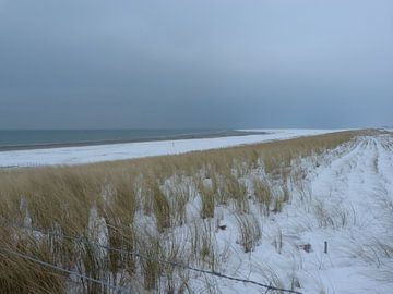 Koud aan de kust van Ronald Wakker