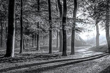 Schaapskooi Hoog Buurloo von Niels Barto