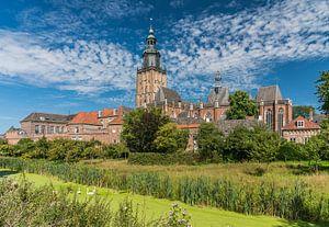 Zwanen bij de Zutphense skyline van Jeroen de Jongh