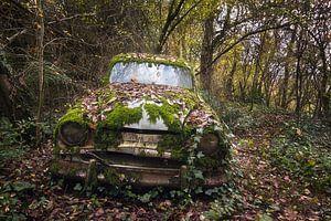 Verlassenes Auto im Wald.