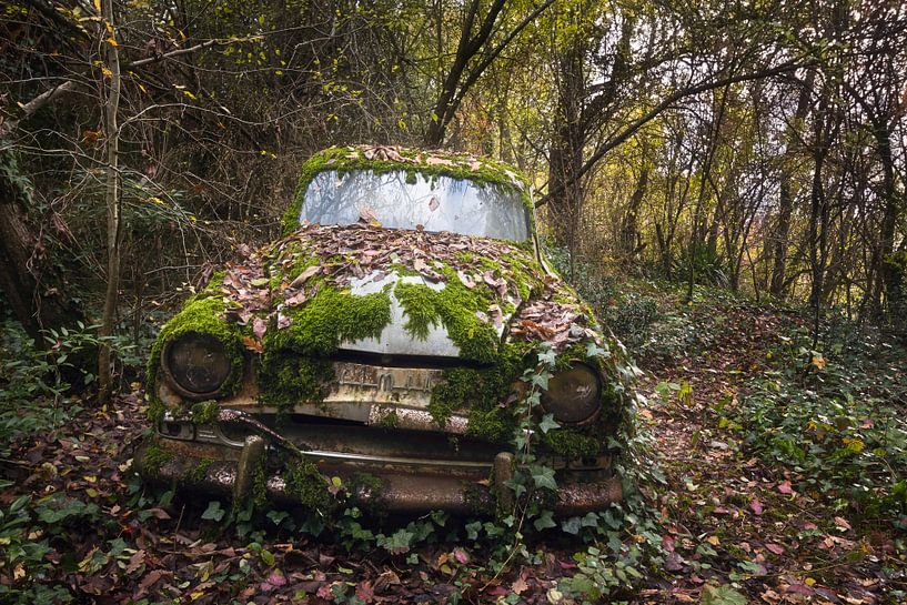 Verlassenes Auto im Wald. von Roman Robroek