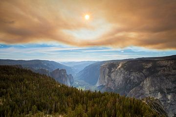 Yosemite Nationalpark nach einem Waldbrand von Antwan Janssen