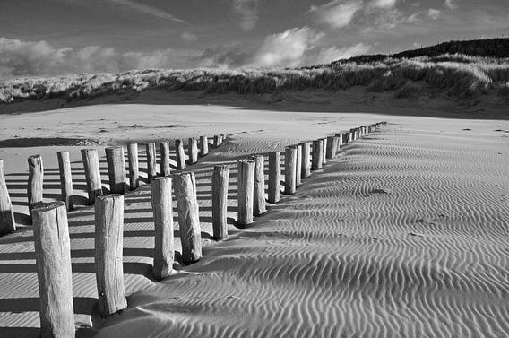 Paalhoofden op het strand bij Domburg van Jonathan van den Broeke