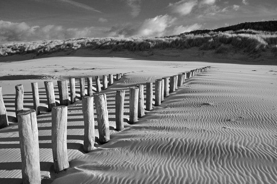 Paalhoofden op het strand bij Domburg