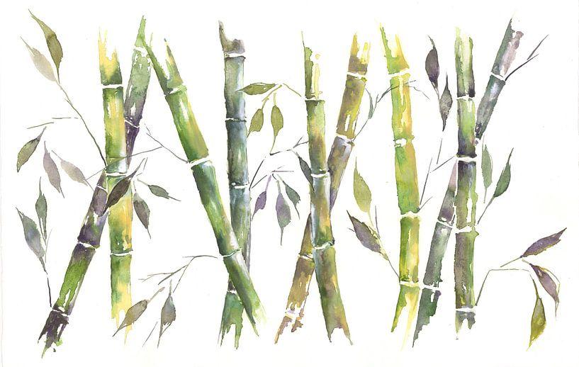Bambus van Jitka Krause