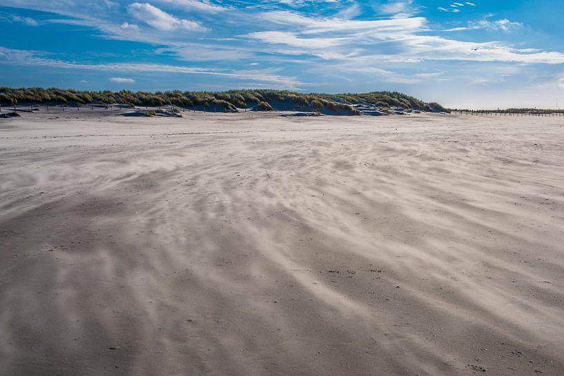 Windy path at the beach van Marco Schep
