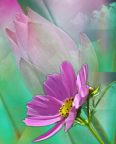 Florale Träume