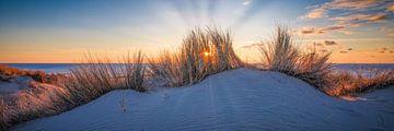 Winterdüne Landschaft von eric van der eijk