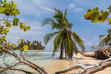 Tropisch strand van Peter Leenen