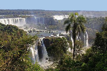 Iguazu watervallen sur