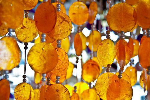 Oranje schelpen van Ellis Peeters